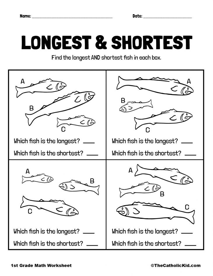 Longest & Shortest - 1st Grade Size Worksheet Catholic