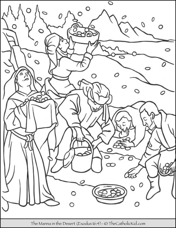 The Manna in the Desert